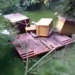 zerstörte Bienenstöcke