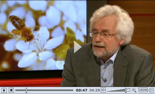 Planet Wissen Gespräch mit Prof. Jürgen Tautz
